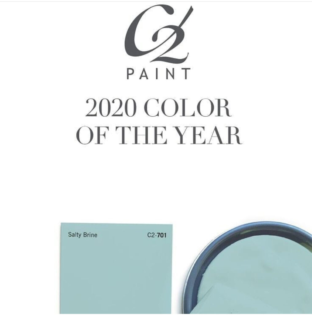 "C2 Paint Color of the Year 2020 ""Salty Brine"""