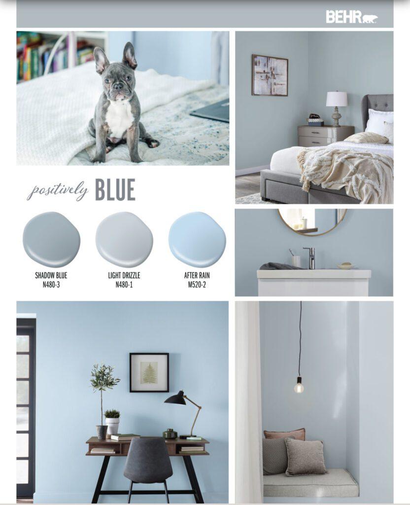 Behr Blue micro palette