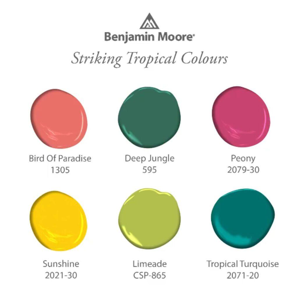 Striking Tropical Colors