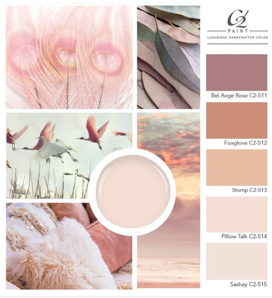 C2 Pink Palette