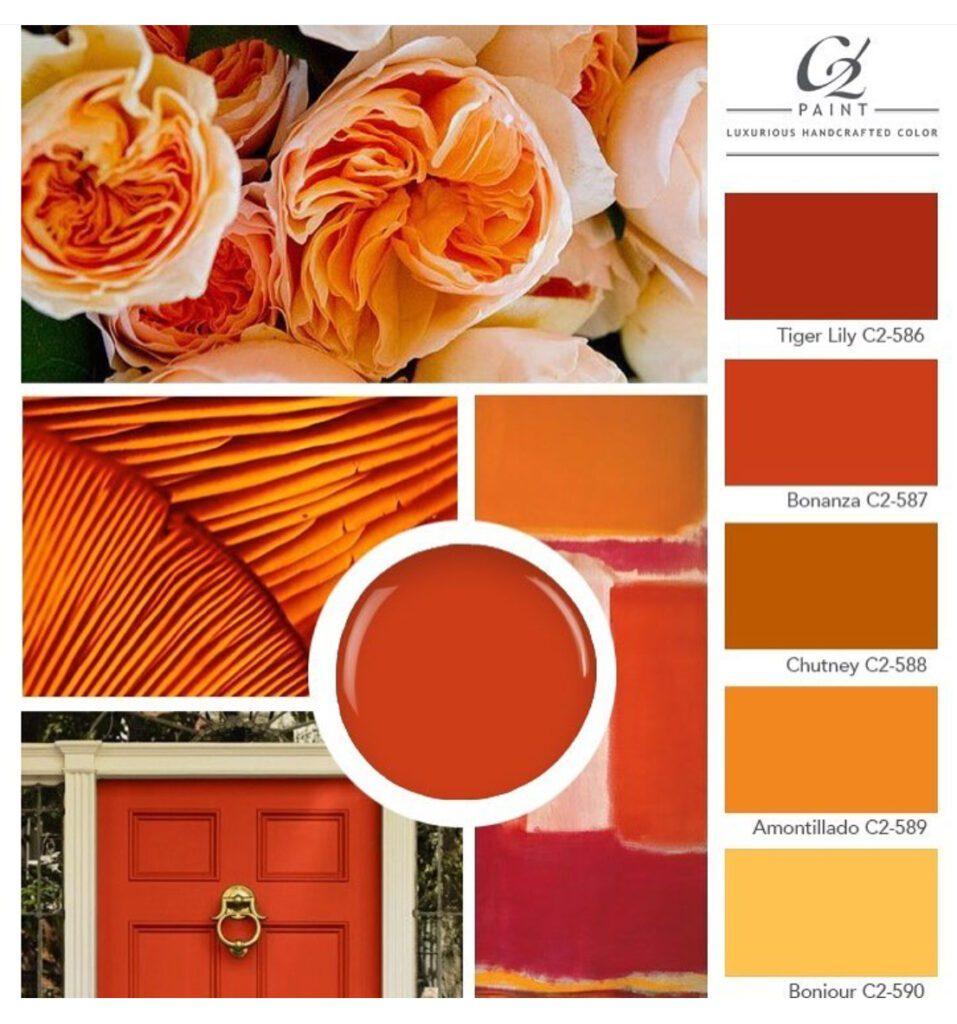 C2 Paint Orange Palette