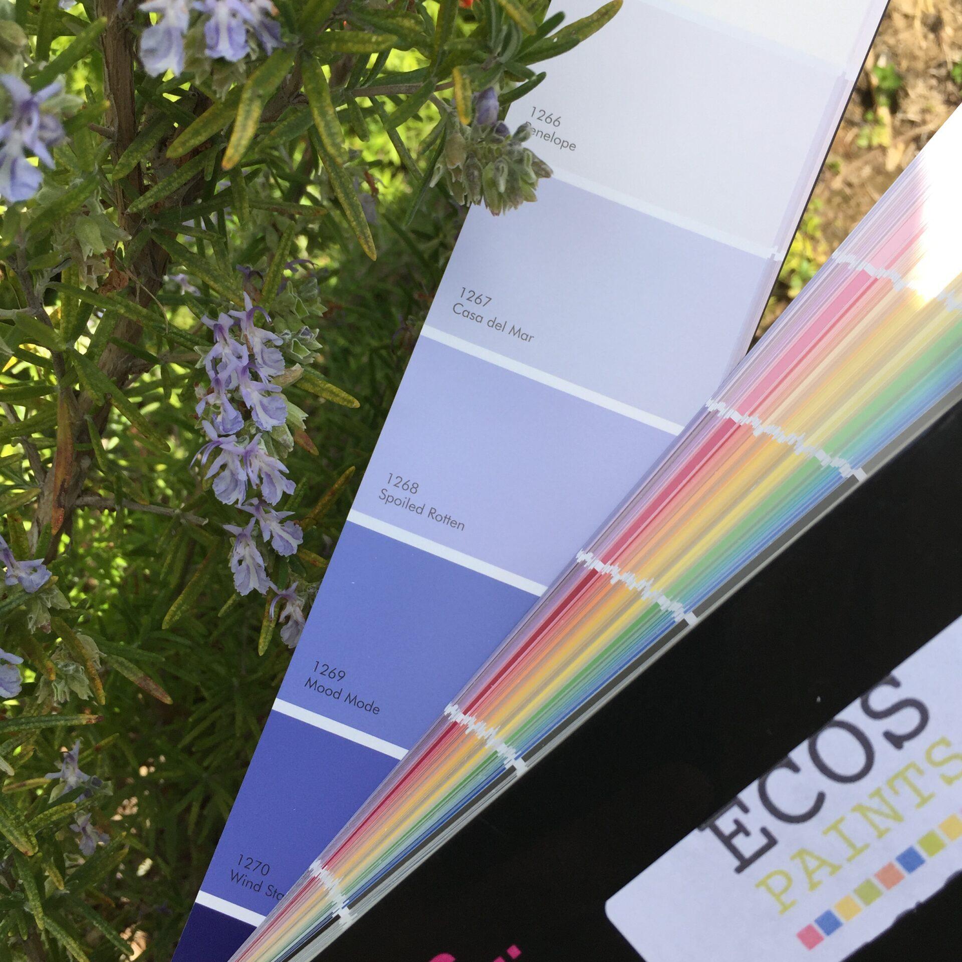 ECOS Paint color inspiration