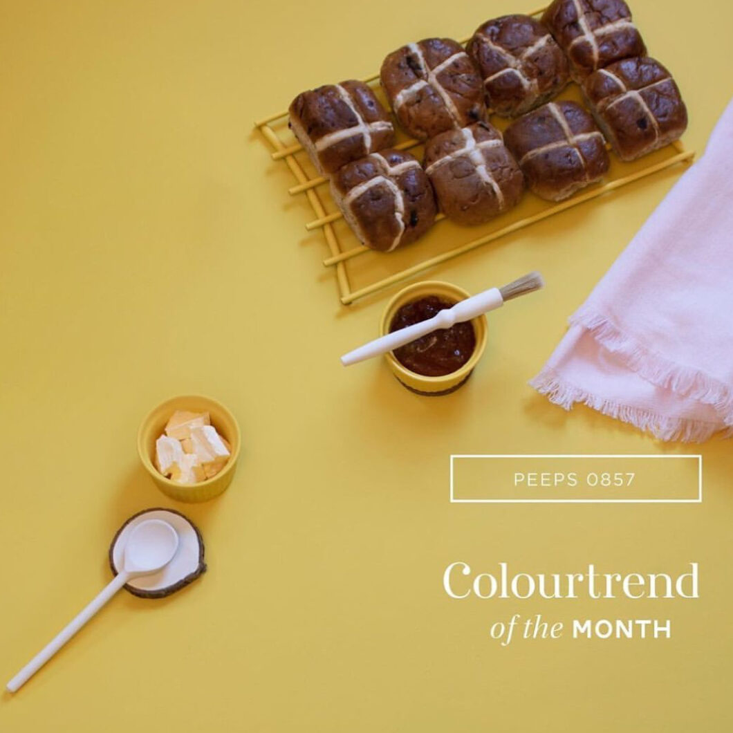 Colourtrend Color of the Month