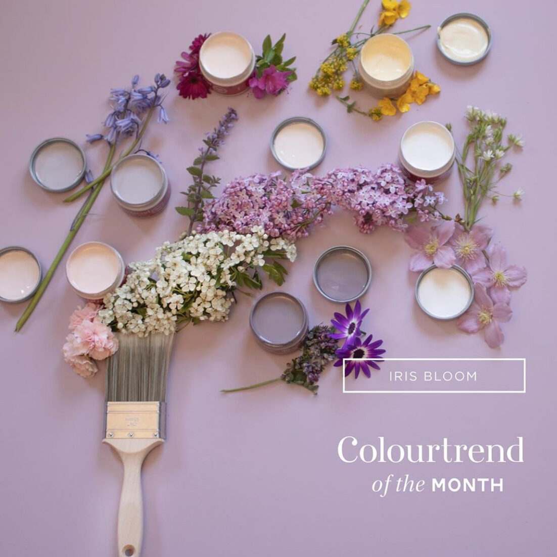 Colourtrend May 2020 Color